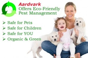 eco friendly pest control and extermination